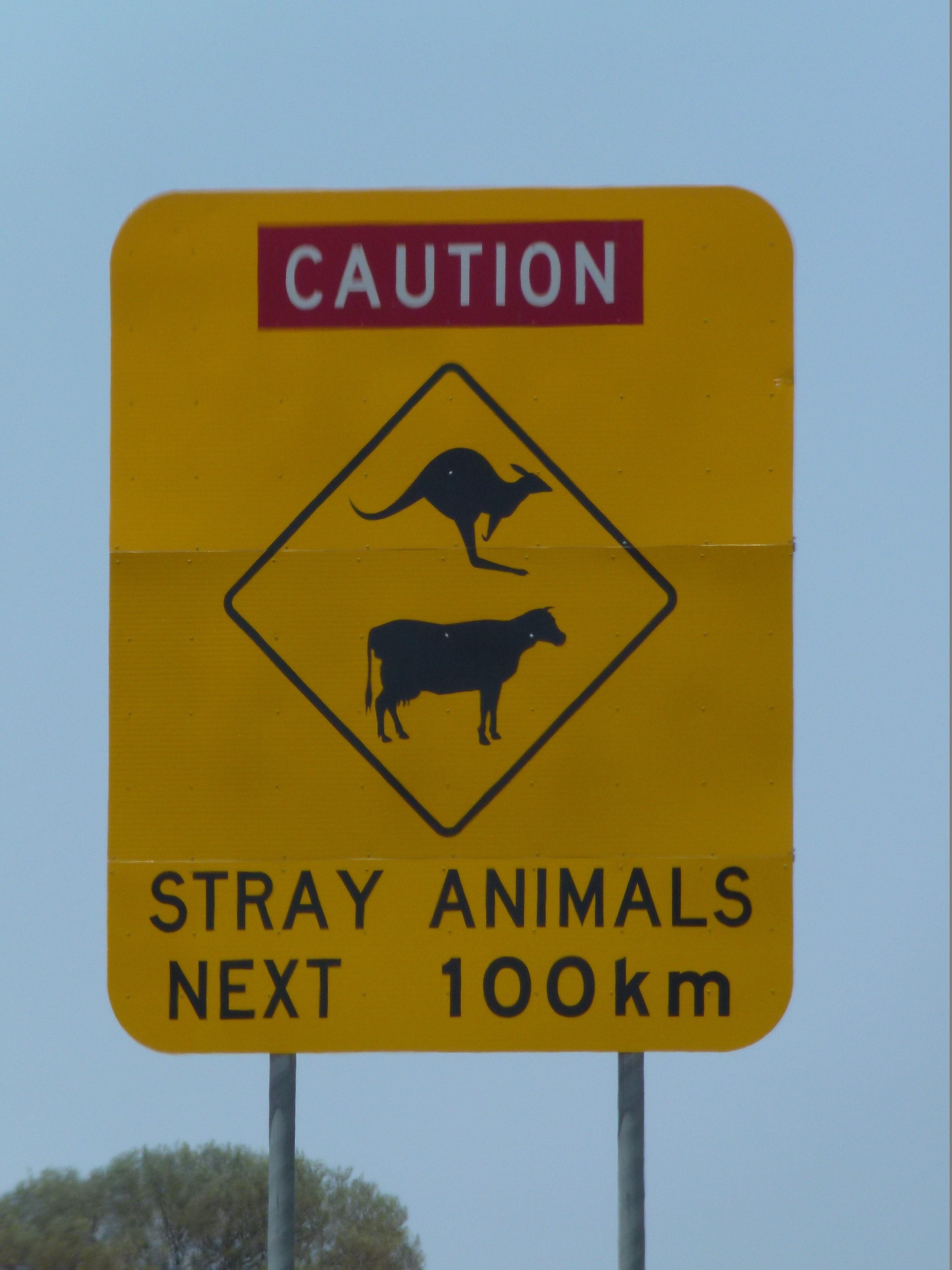 Freilaufende Tiere