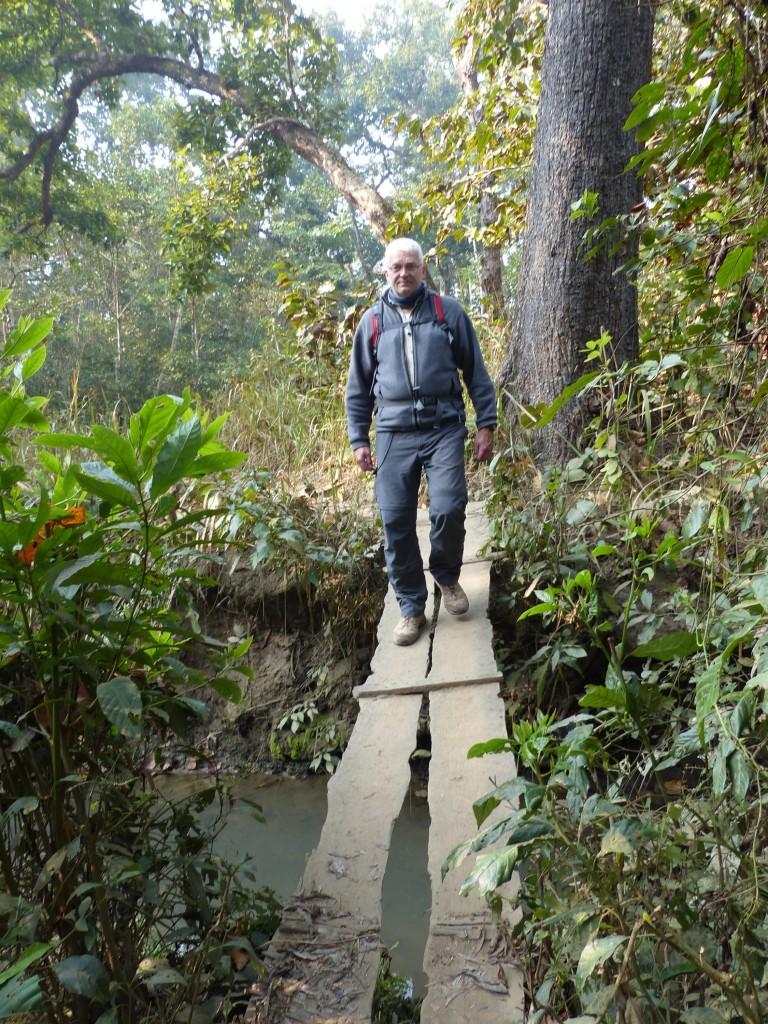 Hasi auf Brücke bei Dschungelwanderung