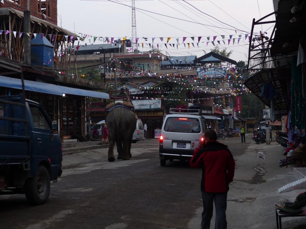 Normaler Verkehr in Chitwan