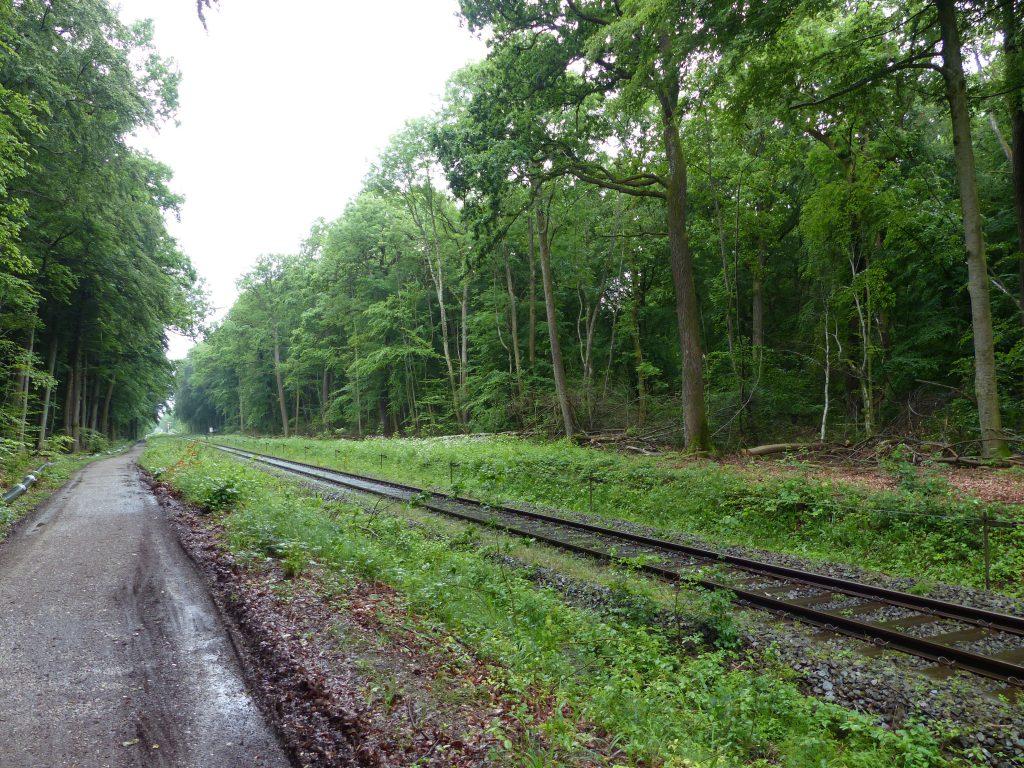 Weg von Holzhausen Richtung Dießen
