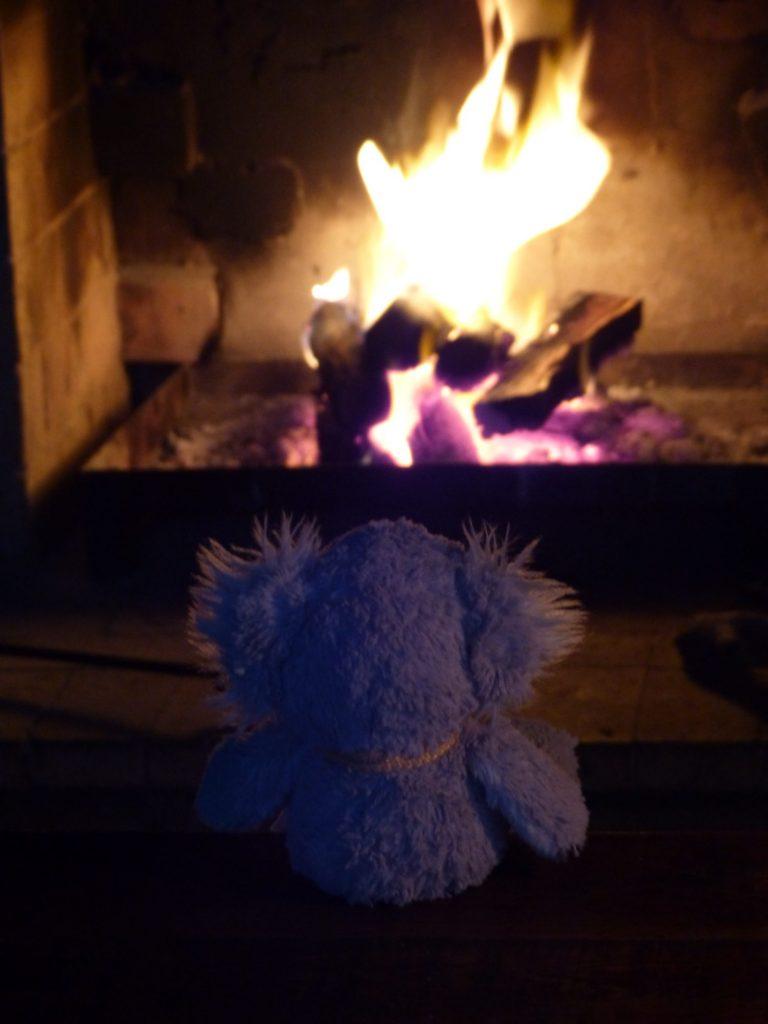 Karl vor Feuer
